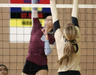 Mid-Michigan high school volleyball preview 2015