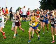 Cowboys are pack strong at Optimist