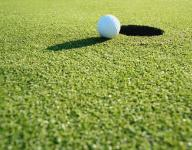 Tuesday night's HS volley and golf scores
