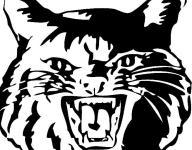 Football: Newark 8th Grade 22, Grove City Brookpark 6