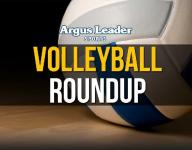 Volleyball roundup: Lynx and Chargers roll