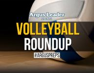 Volleyball roundup: Lynx draws within a win of first place