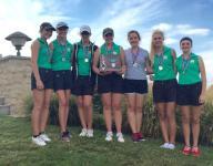 Heartbreaking finish for Newark Catholic girls golf