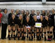 Ozark clinches seventh straight trip to state volleyball championships with win at Willard