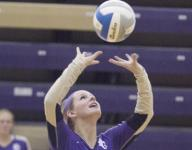 Glads spikers swept by Williamston