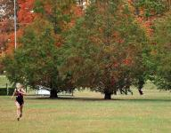Cross country champions crowned at Galion district