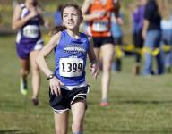 Cross Country: Area state qualifiers an experienced group