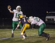 Delta defense shines in sectional win