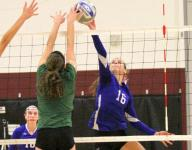 Raiders, Hawks win Section 4 volleyball titles