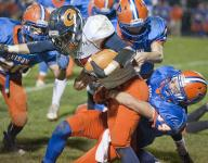 Edison grounds and pounds Galion