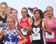 St. Henry girls win cross country team title