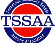 TSSAA: Officials must have yearly background checks
