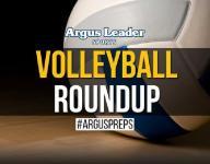 Volleyball roundup: Class AA Regional Finals