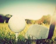 Post-Crescent Media all-area golf team