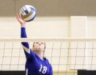 Two from Horseheads among all-state picks