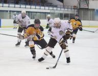 Hockey: Pica, Fischer propel TR North past Brick Memorial