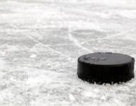 Boys hockey roundup: Sartell slides past Tech, 3-1