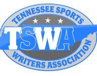 TSWA names DII all-state football teams