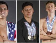 2015 News-Press All-Area Boys Swimming