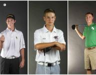 2015 News-Press All-Area boys golf