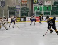 Let's talk about power leagues for Section 1 hockey