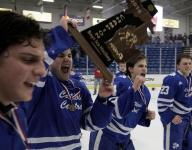 D1 hockey: Shamrocks win third straight title, 3-0