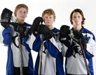 3 stars make up All-Area hockey team