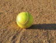 Police: Treasurer of girls softball league embezzled $40K