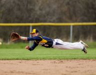 First pitch: Blue Water Area district baseball preview