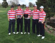 Four Springfield metro teams win district golf tournaments