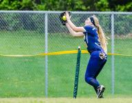 DeWitt softball building off strong finish to 2015