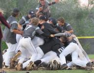 State baseball: Pine View wins its second straight title