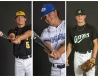 2016 News-Press All-Area baseball