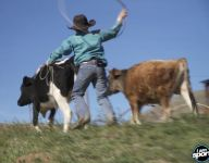 I Am Sport: This 10-year-old rodeo kid knows how to rope 'em