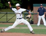 Div. 1 baseball: Nelson in command for Saline