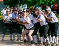 Div. 1 softball: Mercy shuts down Dakota, 4-0