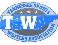 2016 TSWA all-track track teams