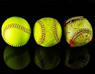 Tennessee softball coach fired amid investigation year after winning state title