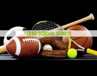 Roundup: Lourdes volleyball tops Harrison