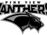 Region Roundup: Pine View, Desert Hills, Snow Canyon pick up volleyball wins