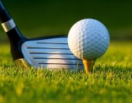 DeWitt golfers finish fifth in Division 2
