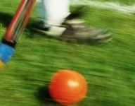 Yorktown's Sanchez, Rye's Govaert, Mamaroneck's Danehy have standout games; Harrison, Greeley, Valhalla among winners