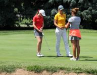 High school golf: Three all-staters from Springfield