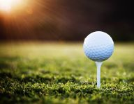 Dubnik leads Section V golfers at state championship