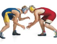 Section V wrestling state wild cards