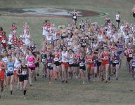 Kling, Stewart post impressive runs at state meet