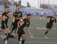 Boys soccer: Hastings routs Carle Place for another trip to states