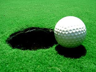 Shaler girl's golf finishes 8th season