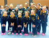 High school gymnastics preview
