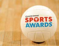 2016-17 CJ All-Area Volleyball Teams, finalists